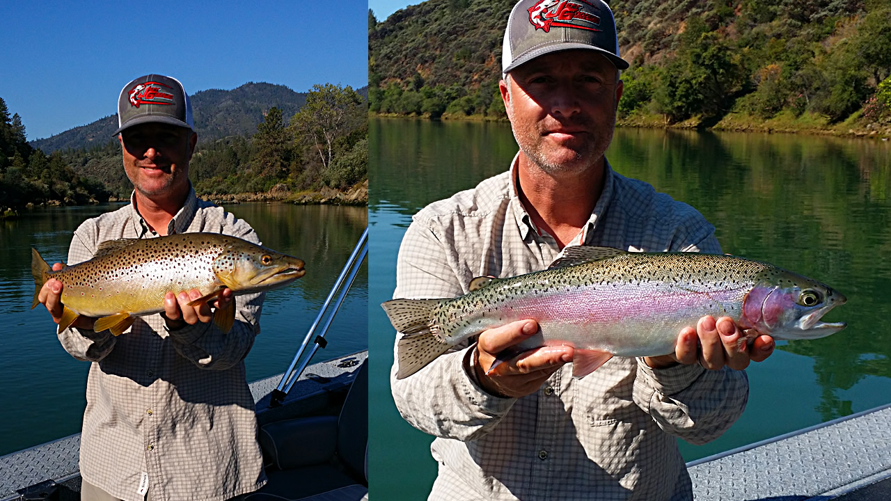 Ac guide services 2017 is going to be great for trout for Whiskeytown lake fishing
